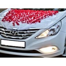 Украсa за сватбен автомобил
